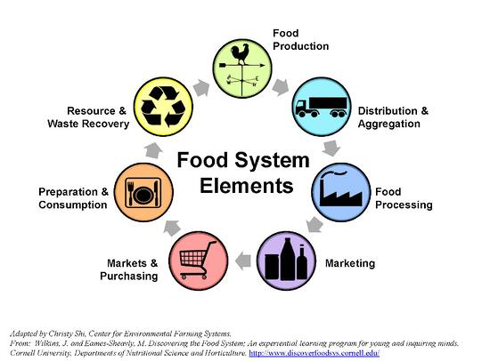 Local-Foods-System-Diagram-no-title