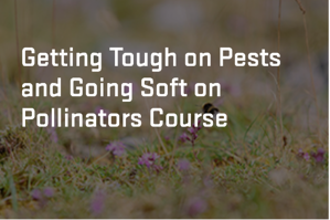 Tough on Pests course