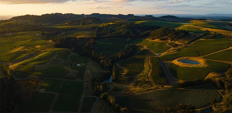 oregon-crop-high-view-web